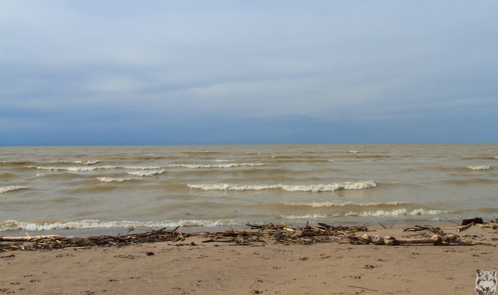 Storms Brewing Over Lake Ontario